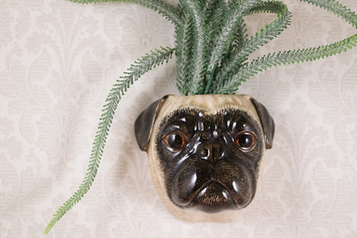 Small pug wallvase