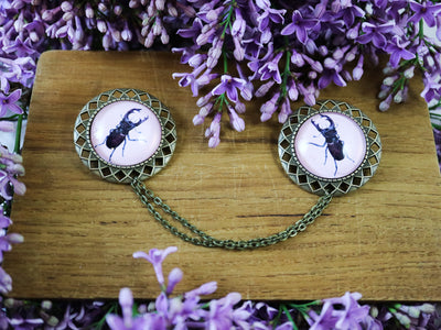 Stag beetle collar brooch