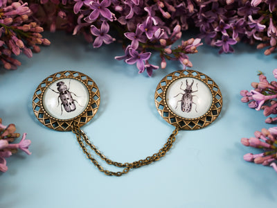 Bugs collar brooch