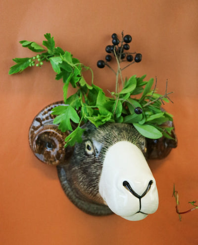 Big Swaledale sheep wallvase
