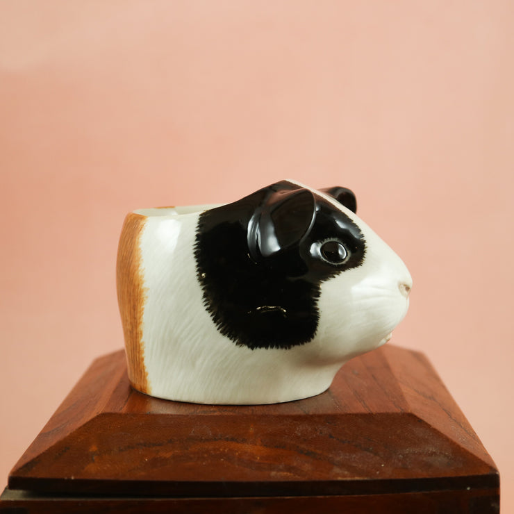 Tricolour guinea pig small cup