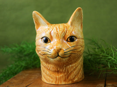 Vincent the ginger cat pot