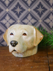 Golden labrador small cup