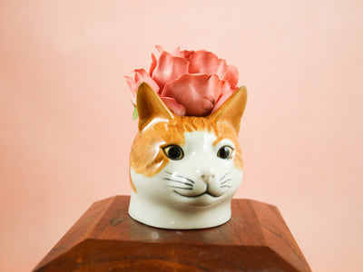 Small ginger cat cup