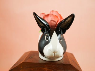 Small black and white dutch rabbit cup