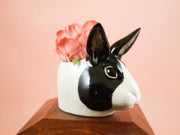 Black and white dutch rabbit small cup