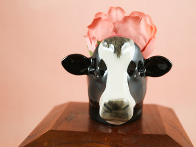 Friesian cow small cup