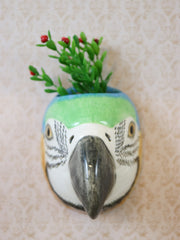 Small macaw wallvase