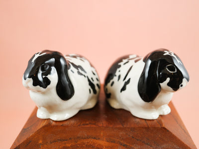 Black and white lop eared rabbits salt and pepper shakers