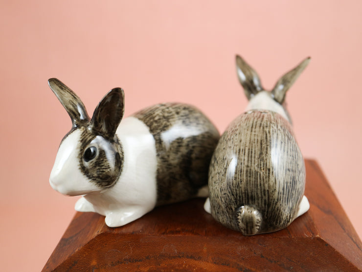 Grey and white dutch rabbits salt and pepper shakers