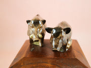 Family of wild boars salt and pepper shakers