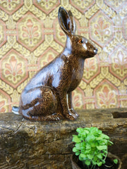 Hare money bank