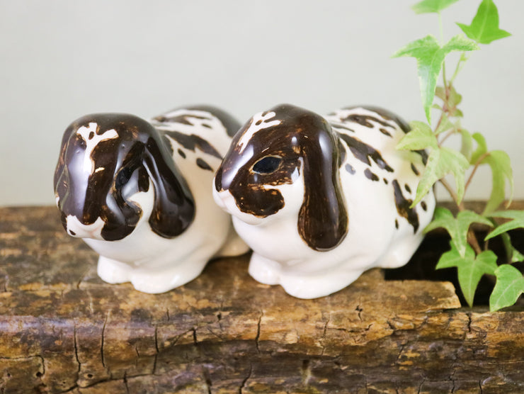 Brown and white lop eared rabbits salt and pepper shakers