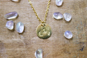 Capricorn zodiak necklace