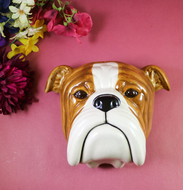 Big English bulldog wallvase