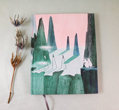 Moomin hard cover notebook Comet in Moominland