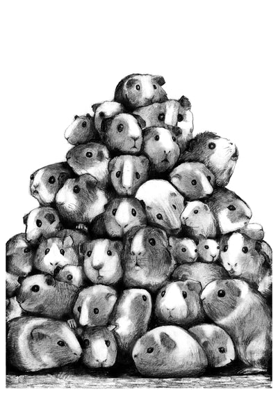 Guinea pig pile A3 print By Mikel Nilsson, signed and limited