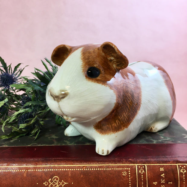 Ginger guinea pig money bank