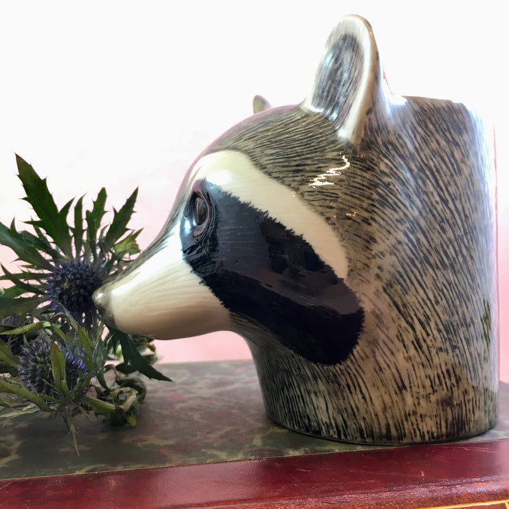 Raccoon pot