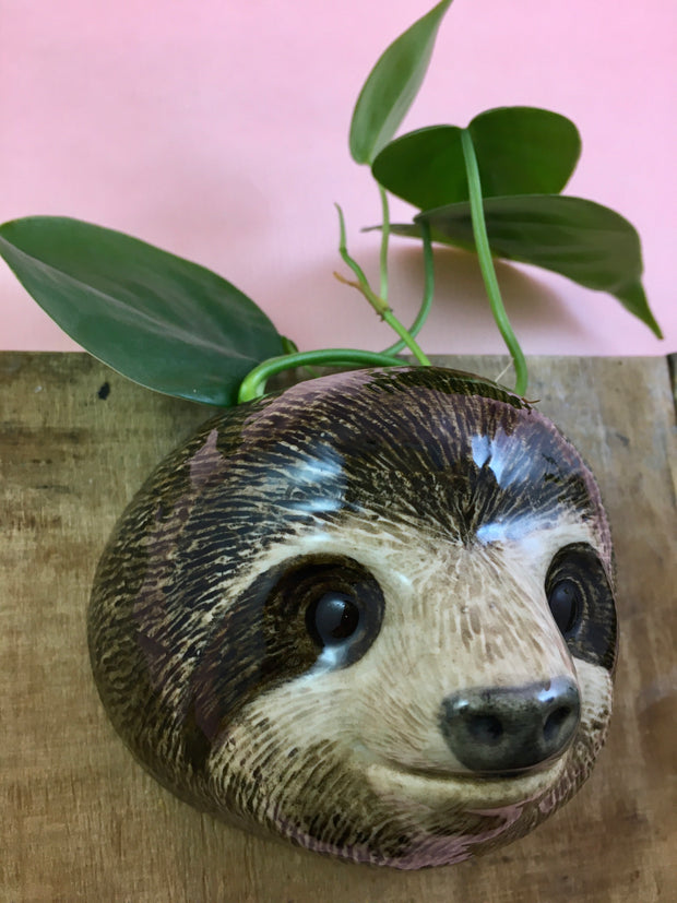 Small sloth wallvase