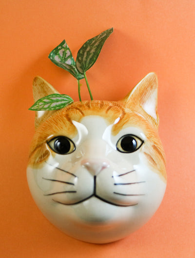 Squash the cat small wallvase