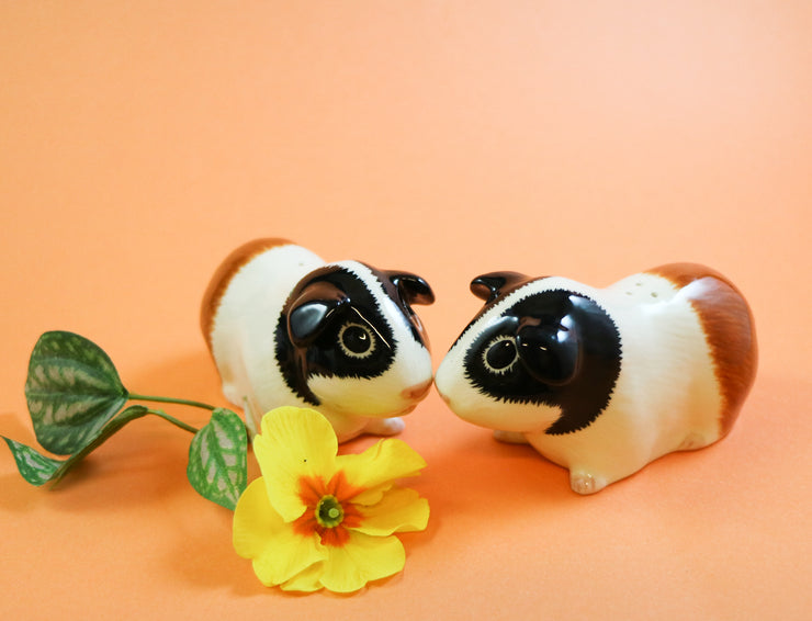Tricolor guinea pig salt and pepper shakers