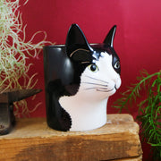 Barney the cat pot