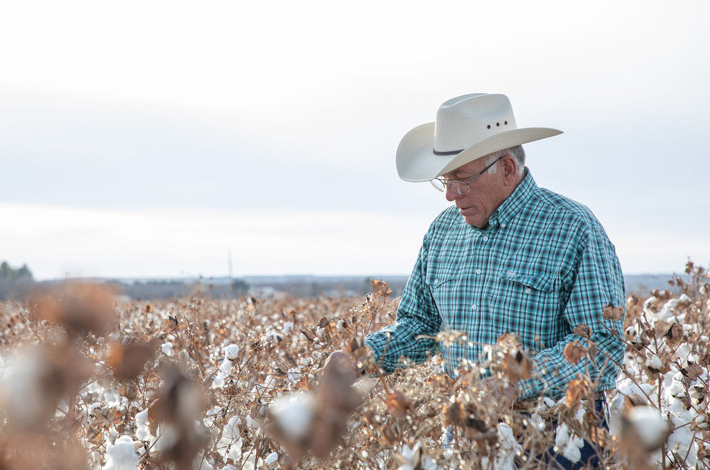 Major brands pledge to achieve sustainable cotton by 2025