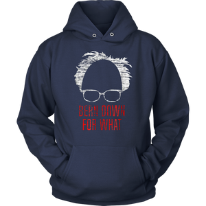 """Hindsight is 2020"" Bernie Sanders Anti-Trump T-shirt"