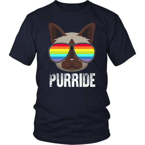 Funny Gay Pride Cat T-Shirt