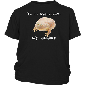 It Is Wednesday My Dudes Meme T Shirt