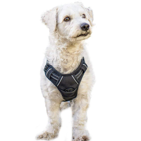 Image of RABBITGOO Dog Harness No-Pull Pet Harness Adjustable Outdoor Pet Vest 3M Reflective Oxford Material Vest for Dogs Easy Control for Small Medium Large Dogs