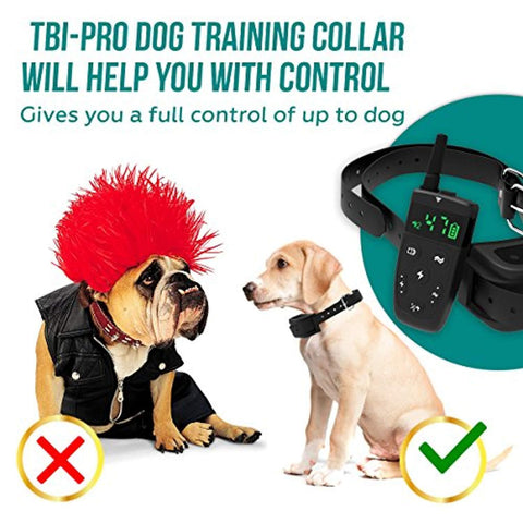 Image of All-New 2019 Dog Training Collar with Remote | Long Range 1600', Shock, Vibration Control, Rechargeable & Ipx7 Waterproof