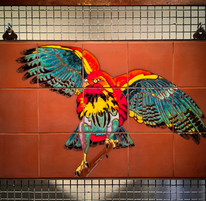 Red Tail Hawk #1 Fine Art Mural