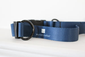 WC Dog Collar