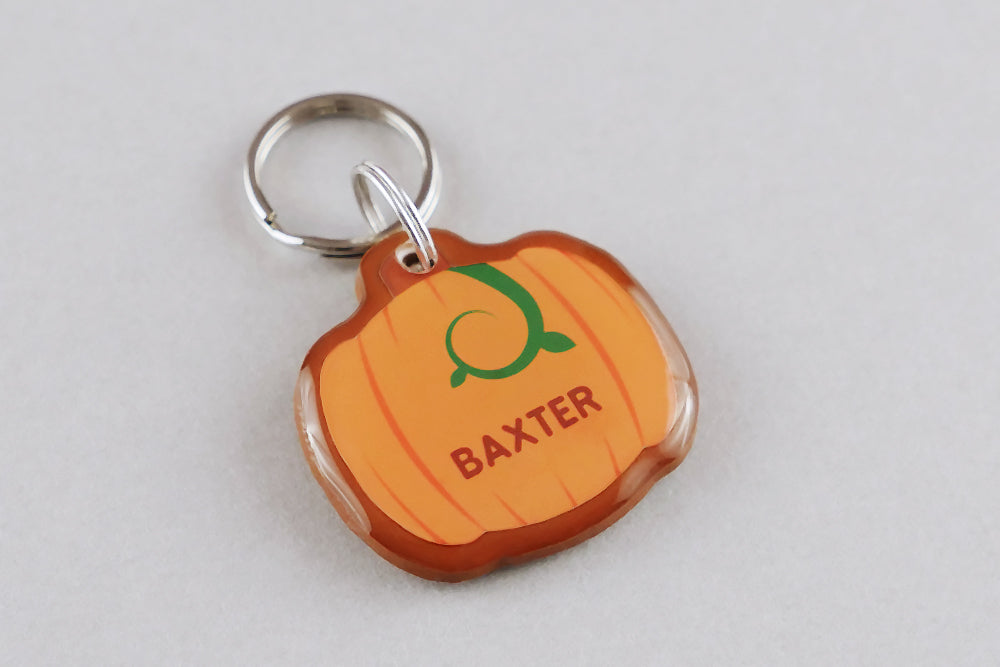 Pumpkin Pet ID Tag - Pixsqueaks