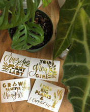 Load image into Gallery viewer, Crazy Plant Lady Vinyl Bundle