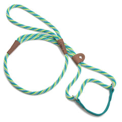 Mendota Dog Walker Martingale Lead Seafoam