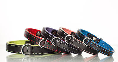 London Leather Collars & Leads