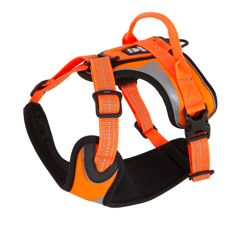Hurtta Active Dazzle Harness Hi-Viz Orange