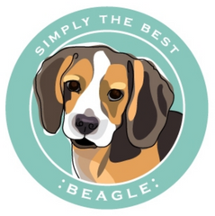 Simply the Best Car Magnet Beagle