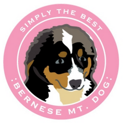 Simply the Best Car Magnet Bernese Mountain Dog