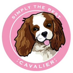 Simply the Best Car Magnet Cavalier King Charles Spaniel (Blenheim)