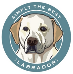 Simply the Best Car Magnet Labrador (Yellow)