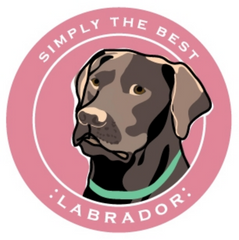 Simply the Best Car Magnet Labrador (Chocolate)