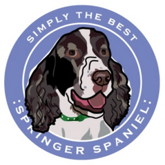 Simply the Best Car Magnet Springer Spaniel