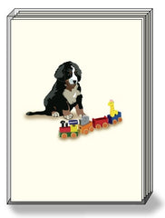 DogPride Box Note Cards Bernese Mountain Dog