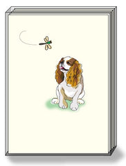 DogPride Box Note Cards Cavalier King Charles Spaniel Blenheim
