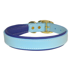 Leather Padded Collar Sky Blue/Navy Blue