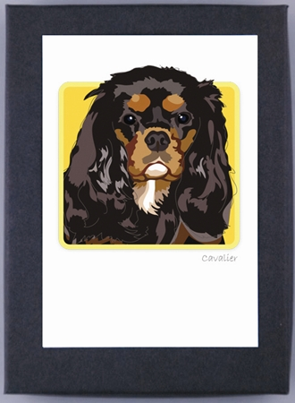 Paper Russells Boxed Note Cards - Cavalier King Charles Spaniel